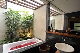 Palm Tree Bathroom Accessories by Bathroom Design Fabulous Bathrooms Hanging Bathroom Plants