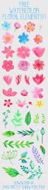 margarita time clipart 25 unique flower clipart ideas on pinterest free clip art