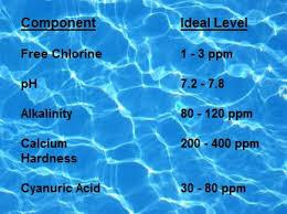 new pool owner u0027s ultimate pool basics guide