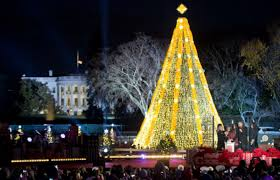 national christmas tree lighting in dc where are sue u0026 mike