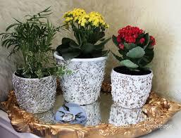 beautiful stylish decorating plastic plant pots for hall kitchen