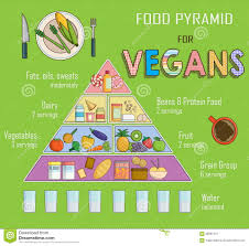 infographic chart illustration of a food pyramid for vegetarian
