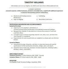 Resume Employment History Sample by Carpenters Resume Free Resume Example And Writing Download