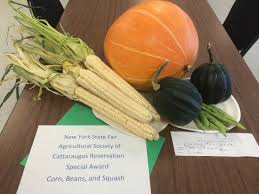native american food plants food is our medicine seneca nation new york u2013 from garden