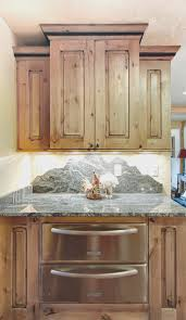 kitchen cool rustic kitchen cabinet doors design ideas modern