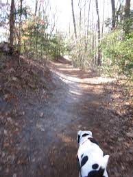 First Landing State Park Trail Map by Virginia Is For Nature Lovers Day Hike With My Dog In First