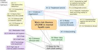 of the risk themes in mental health care