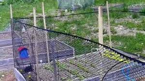 fencing ideas for raised bed gardens youtube