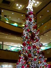 25 melhores ideias de tropical christmas trees no pinterest