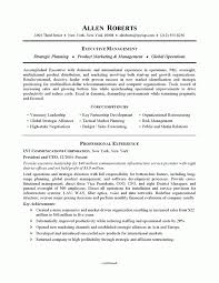 Example Of Government Resume by Example Of Resumes 10 Resume Cv