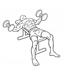 Flat Bench Press Dumbbell The Best Inner Chest Workout For Mass Take Fitness