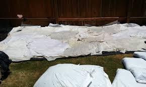 beds over bermuda grass or landscape fabric sandwich crazy 20130609 141651