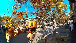 disney sisters the story behind u0027the halloween tree u0027 at