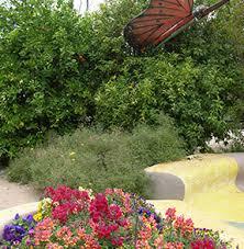 Quail Botanical Gardens Free Tuesday Visit Tucson Botanical Garden