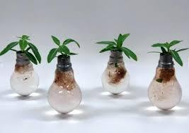t5 grow light bulbs what is a plant light bulb recycle light bulb planter t5 grow light