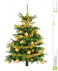 lush tree with gold baubles royalty free stock
