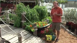 Tips For Planting A Vegetable Garden by Maintaining A Garden Vegetable Gardening For Beginners Youtube