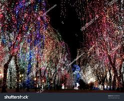 christmas decorations outdoors lights on trees stock photo