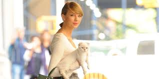 taylor swift halloween taylor swift and her cat are officially twinsies huffpost