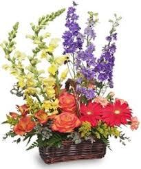 Meme Florist - about us meme s floral vineyard saint martinville la