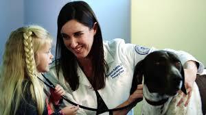 Veterinary Clinic Idaho Veterinary Internal Affordable Pet Care Arizona Veterinary Clinic Companion Animal