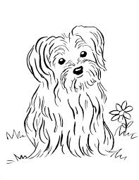 puppy coloring samantha bell