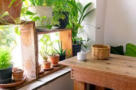 lighting for indoor gardening hipages com au