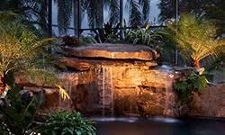 landscape lighting and pool lights for outdoor designs in sarasota