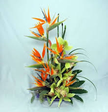 tropical flower arrangements paradise blooms kremp