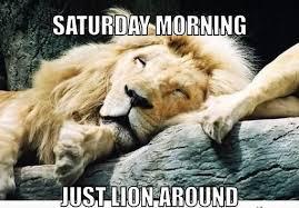 Funny Saturday Memes - 10 funny saturday memes that capture real feelings of the weekend