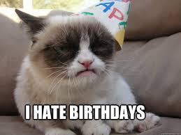 Cat Birthday Memes - grumpy cat birthday memes quickmeme