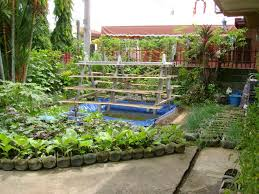 Patio Vegetables by How To Use Crop Rotation In Your Backyard Vegetable Garden