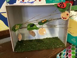 second grade life cycle projects u2013 st brigid