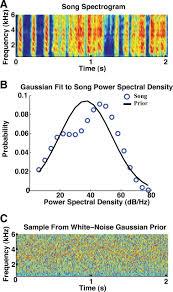 incorporating naturalistic correlation structure improves