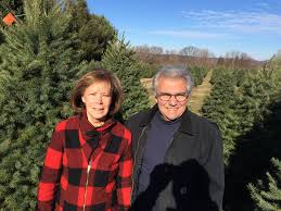 evergreen christmas tree farm in the beautiful hudson valley