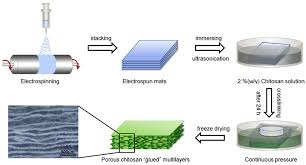 guided bone regeneration polymers free full text biodegradable polymer membranes