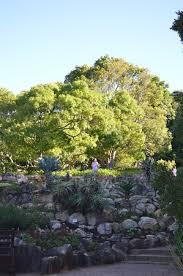 Kirstenbosch Botanical Gardens Kirstenbosch National Botanical Garden Newlands All You Need