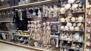halloween stuff in stores for 2017