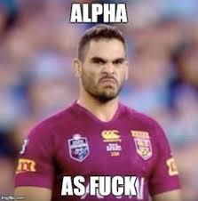 Queensland Memes - q queensland state of origin australia pinterest rugby rugby