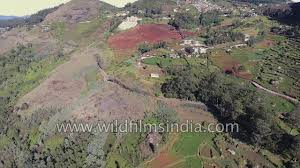eastern ghats eastern ghats aerial journey with lateritic soil in tea gardens