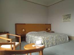 notre chambre notre chambre photo de aletti palace hotel vichy tripadvisor