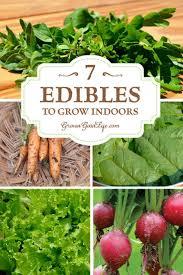 567 best bring your garden inside images on pinterest plants