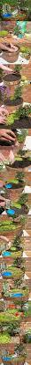 8 amazing miniature fairy garden diy ideas fairy diy ideas and