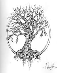 willow tree drawing willow tree drawing with roots willow tree