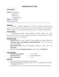 resume summary of qualifications for emotiv company skill family