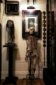 Halloween Skeleton Decoration Ideas 455 Best Skulls And Skeletons 4 Images On Pinterest Skeletons