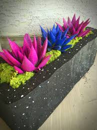 cosmic cactus from home depot planted in a brick painted black