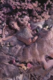 25 sleeping beauty ballet ideas sleeping