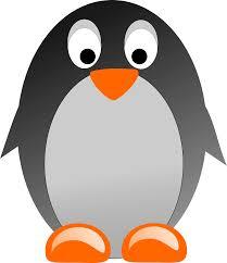 clipart pinguino penguin