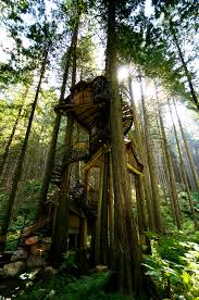 famous tree houses amazing tree houses funny jokes pictures videos phun in